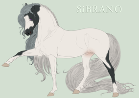 Sibrano stallion 2013 - JUDGED by Danesippi