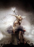 Ballerina Doves D by cdlitestudio