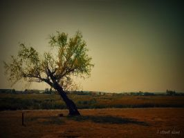 I stand alone by BehindGreenEy3s