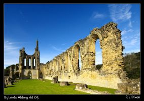 Bylands Abbey rld 05 by richardldixon