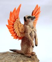 Winged meerkat by hontor