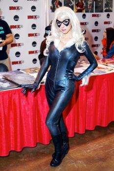 Black Cat By Riddle Fan Expo 2015 #02 by Lightning--Baron