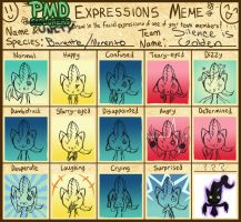 Expressions by hack-slash
