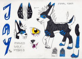 Jay Feral Ref. Sheet (Outdated) by caIImejay