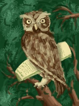 Owl from Hogwarts by AtmaCat