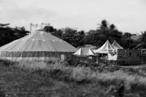 TheDayTheCircusCameToTown_B-W by AlexeiSolha