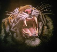 ROAR OF THE TIGER by thehungryartist
