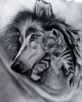 Dog And Cat by Firebird454