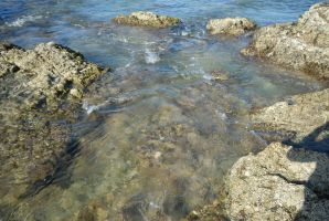 rock pools1 by millhouse12