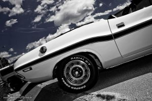 old Challenger back by AmericanMuscle