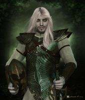 Elven Guard by Kachinadoll