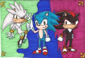 Sonic, Shadow, and Silver by MegamiMizuL