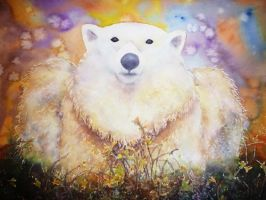 Because not all polar bears are cold. by seadworp