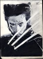 wolverine(reupload) by thiphobia