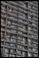 Trellick Tower 01 by aaron-thompson