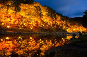 autumn ilumination by fkendi