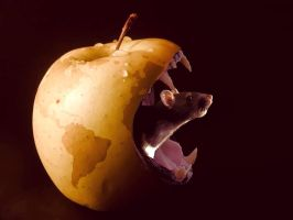 Apple with mouth with a rat by David-More
