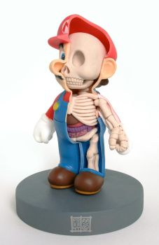 Mario Anatomy Sculpt Model by freeny