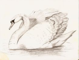 Swan by PixlPhantasy