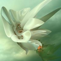 flower  lily by GLO-HE