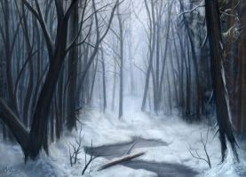 Winterscape by d3fect