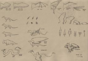 Dragon references - wings and bodies by dragona