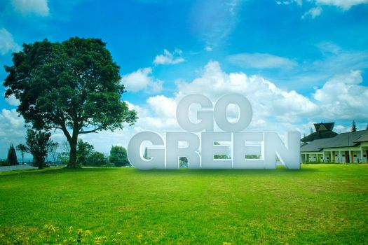 go green by negerilama