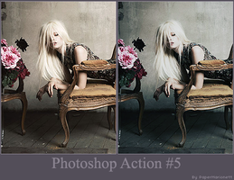 Photoshop Action 5 by PaperMarionett
