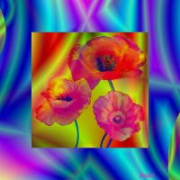 Decorative panel with poppies. by Mladavid
