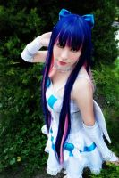 Anarchy Stocking by Lelouch-Uchiha