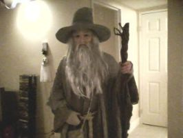 Gandalf costume 1 of 2 by shadowcast89