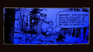 calvin and hobbes best strip by seclairty31