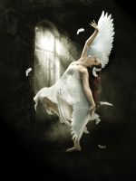 The Dying SWan by babsartcreations