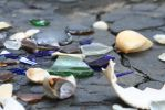 Glass and Shells III by Stock-Wulf