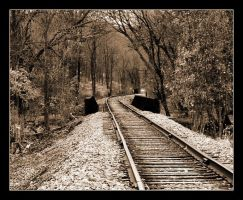 Distance Ahead- Sepia by syrenemyst