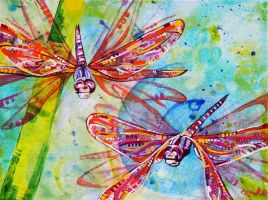 Dragonflies by Eve-I