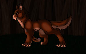 Jacob Black by wolfycatlover38