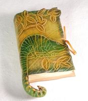 Chameleon Notebook by gildbookbinders