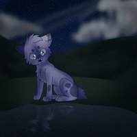 Why Is It Always Night by nikkithedog3