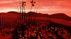 Field of Flowers Wallpaper by curious3d