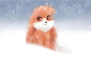 Zenox in the snow by twisted-wind