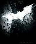 Batman: The Dark Knight Rises by Tiago-Borges