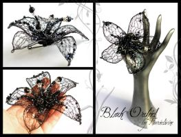 Black Orchid by Faeriedivine
