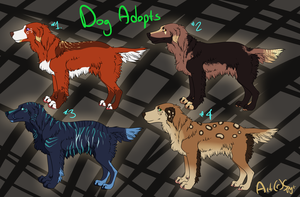 Random Dog Adopts CLOSED by DemThree-Adopts