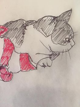 Rene the cat by cableclair