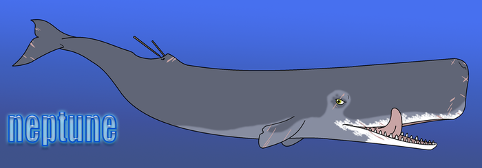 It is a whale named Neptune by SergeanTrooper