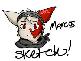 Marcus the Zangoose (SKETCH) by MeaninglessKitkat