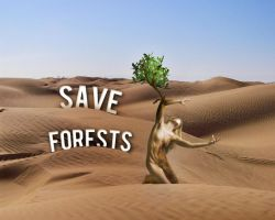 Save forests by Tutsii