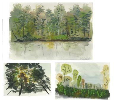 Graphic research for a forest by JackLHS