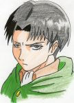 Captain Levi by rayboy55
